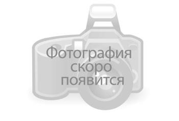 Ольга Чернолуцкая