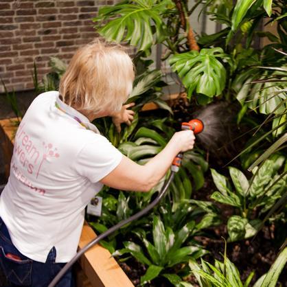Обслуживание растений