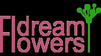 DreamFlowers