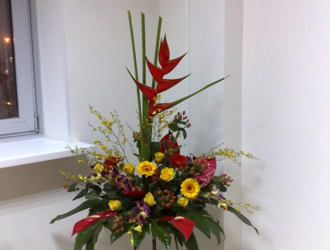 цветы 018